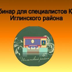 Инновационная форма работы со специалистами КДУ Иглинского района.